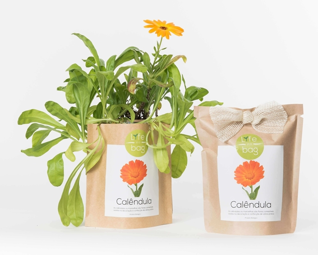 Grow your own calendula  in this bag