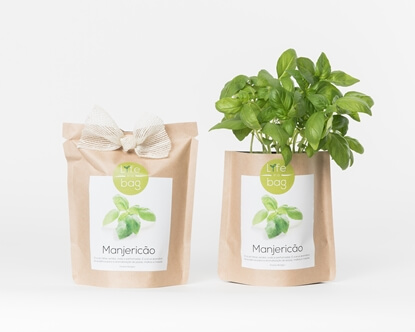 Picture of Basil Grow Bag
