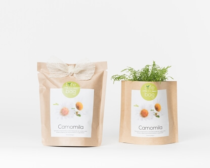 Image de Grow Bag Camomille