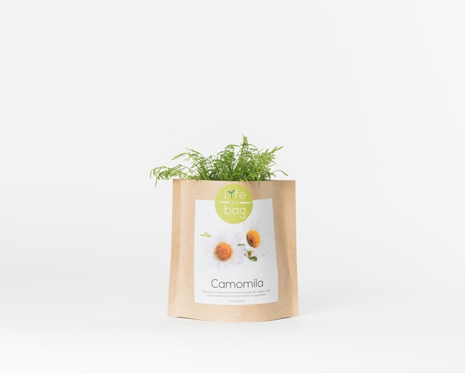 Grow your own chamomile in this bag