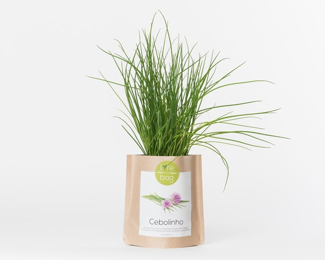 Grow your own chives in this bag