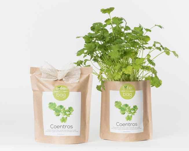 Grow your own coriander in this bag