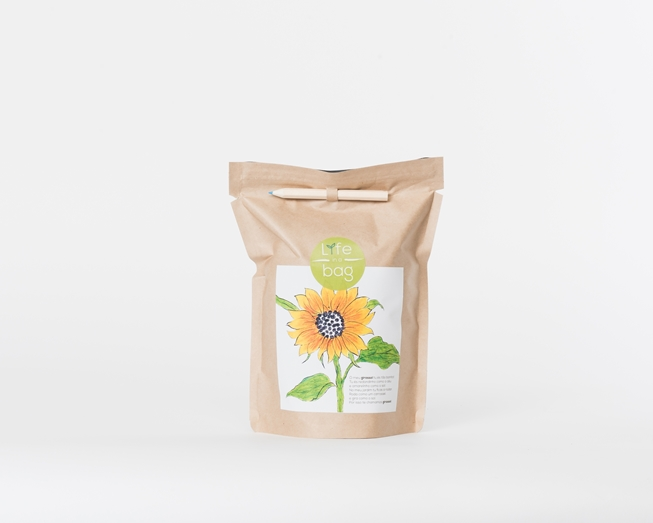 Grow your own sunflower in this bag