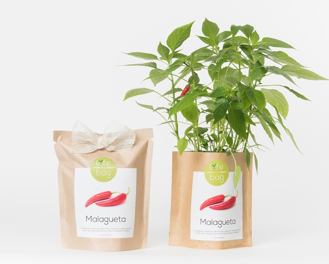 Grow your own chili pepper in this bag