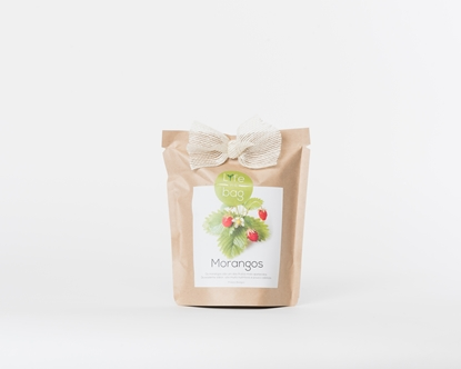 Grow your own strawberries in this bag