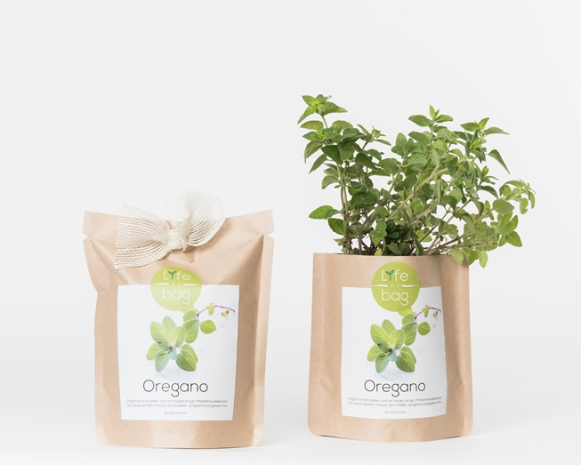 Grow your own oreganos in this bag