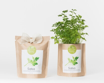 Image de Grow Bag Persil