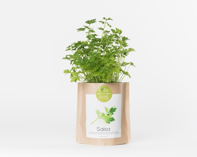 Grow your own parsley in this bag