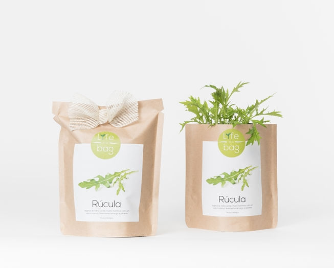 Grow your own rocket in this bag