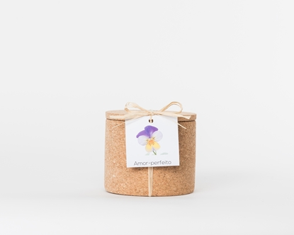 Grow your viola tricolor in this cork pot
