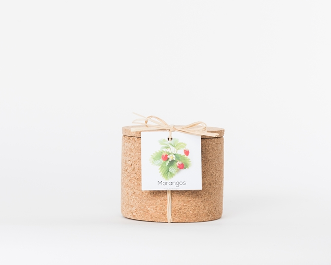 Grow your strawberry in this cork pot