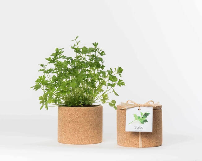 Grow your parsley in this cork pot
