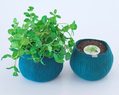 Picture of Peppermint Wool Pot