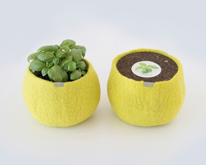 Image de Wool Pot Basilic