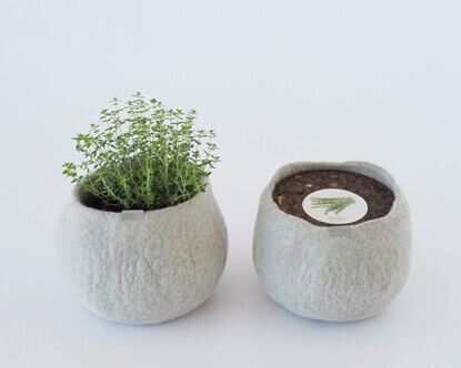 Picture of Thyme Wool Pot
