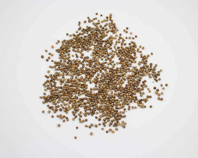 Picture of Organic Seeds