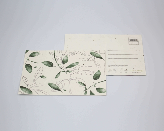Picture of Plantable postcard with Basil Illustration
