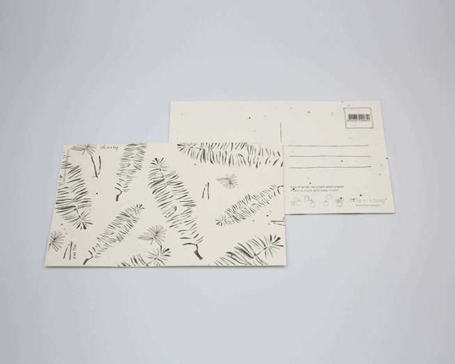 Picture of Plantable postcard with Pine Illustration