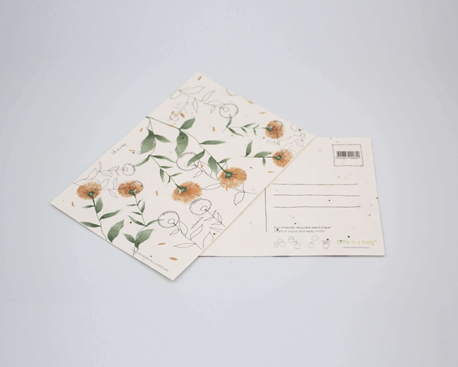 Picture of Plantable postcard with Calendula Illustration