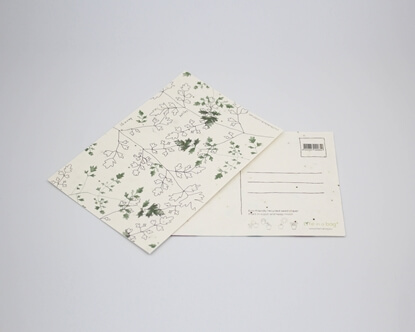 Picture of Plantable postcard with Parsley Illustration