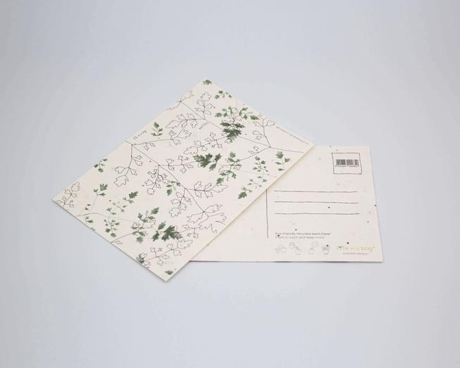 Bild von Pflanzliche Postkarte mit Petersilie Illustration