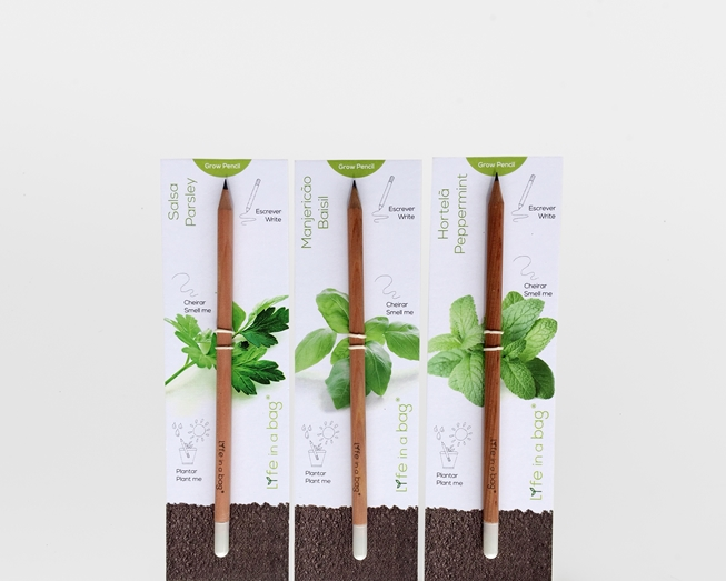 Image sur Ensemble 3 Grow Pencil Aromatique