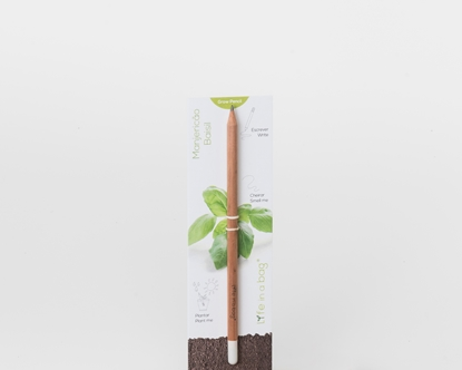 Foto de Grow Pencil Albahaca