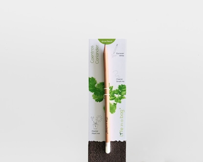 Image de Grow Pencil Coriandre