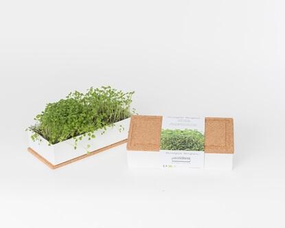 Bild von Microgreens Duo Rucola und Kresse