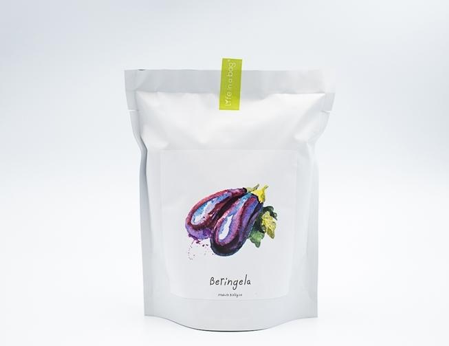 Grow bag para semear beringelas