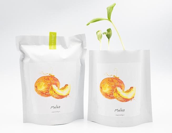 Grow bag para semear melão branco do ribatejo