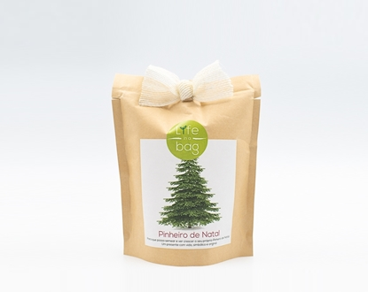 Grow your own Christmas tree in this bag