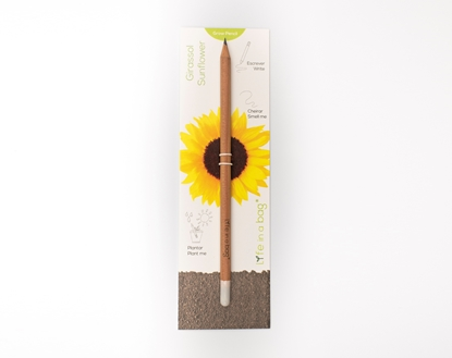 Foto de Grow Pencil Girasol