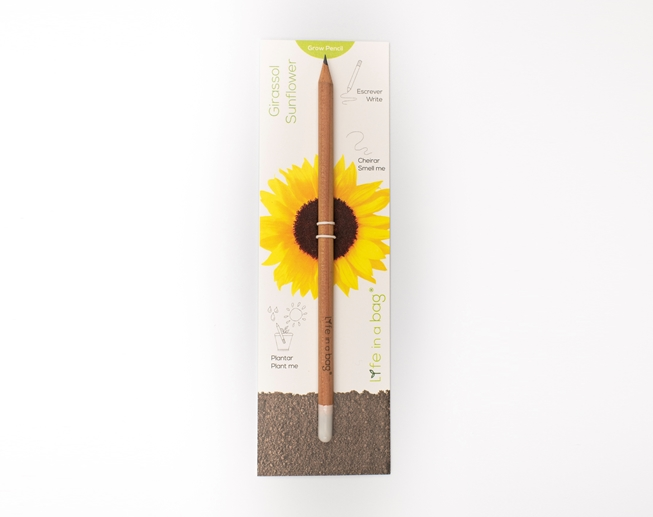 Picture of Grow Pencil Girassol