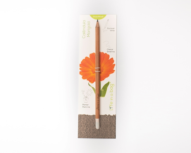 Picture of Grow Pencil Calendula