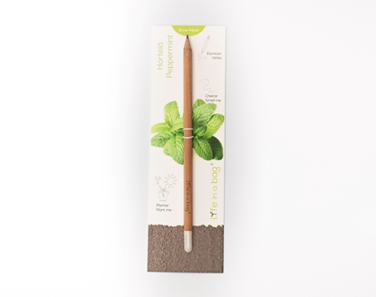 Picture of Grow Pencil Peppermint