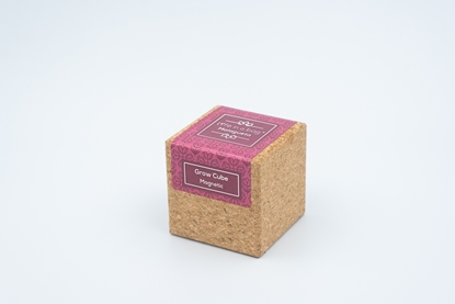 Cork cube with magnet to grow chilippeper