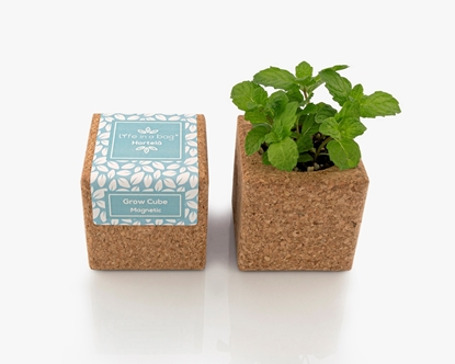 Cork cube with magnet to grow mint