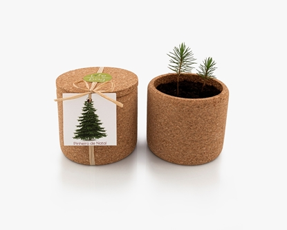 Grow your xmas tree in this cork pot