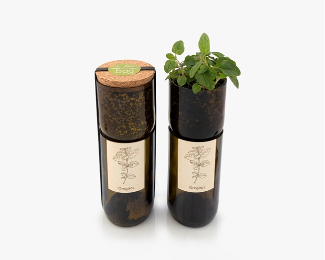 Grow oregano in this bottle