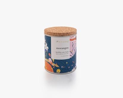 Jardim em lata floral morangos