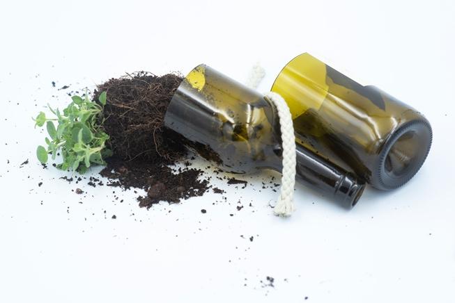 Bottle to grow herbs