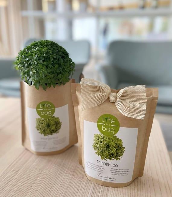 Grow Bag Manjerico