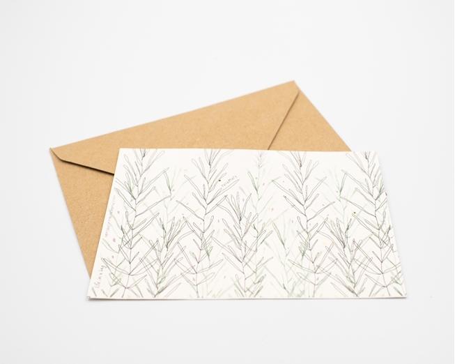 Postal para plantar - alecrim