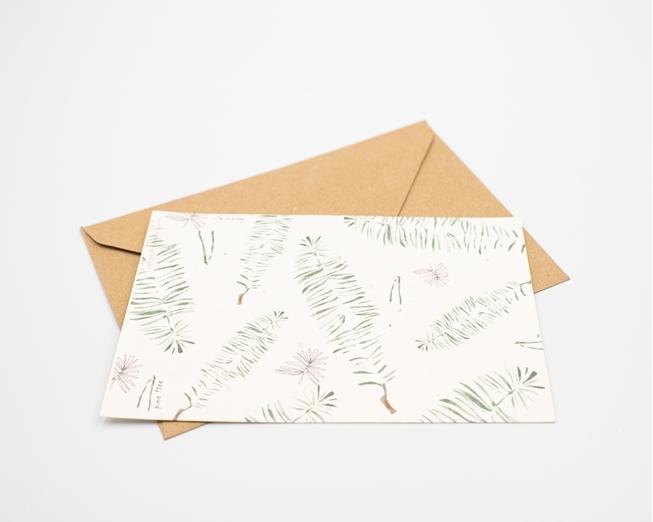 Postal para plantar - pinheiro