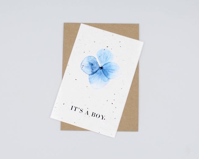 Postal com sementes - it's a boy